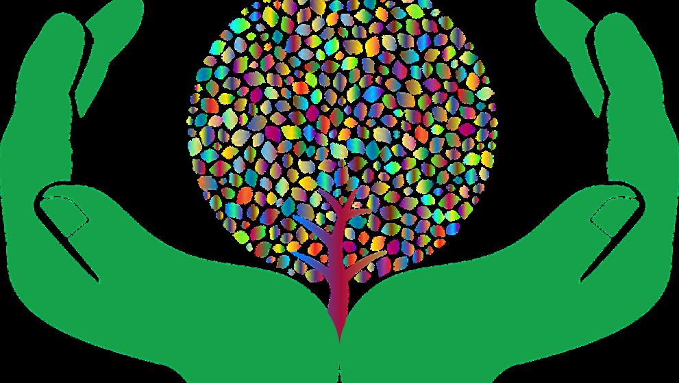 7 artículos que ahora son biodegradables gracias a las innovaciones de reciclaje