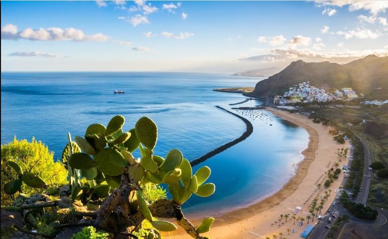 Tour guiado por Tenerife