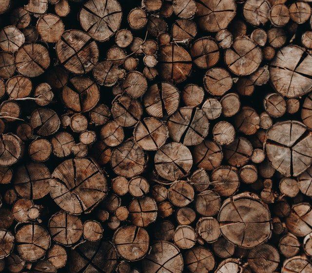 Muebles de madera: lo que debes saber