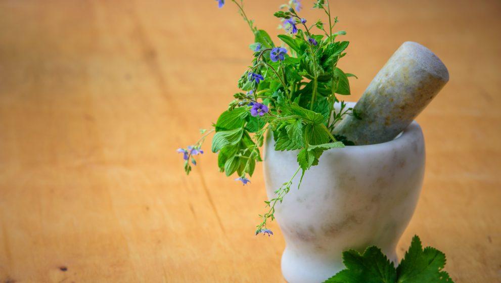¿Qué es la medicina tradicional china?